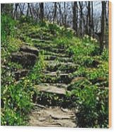 Spring In Your Step Wood Print