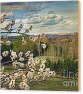 Spring Time Wood Print by Robert Bales