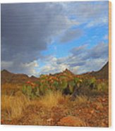 Springtime In Arizona Wood Print