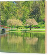 Springtime Reflections Wood Print