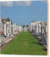 St Louis Cemetery No 3 New Orleans Wood Print by Christine Till