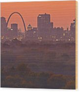 St Louis Skyline And Arch Wood Print