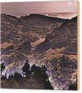 Starry Night Landscape Wood Print