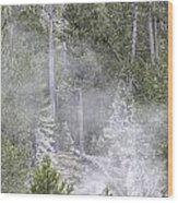 Steam Rising Wood Print
