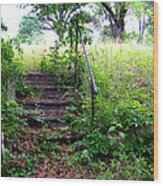 Steps To Yesterday Wood Print