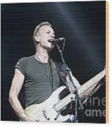 Sting Of The Police Wood Print