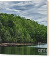 Stonewall Jackson Lake Wildlife Management Area Wood Print