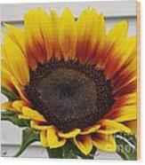 Sunflower Named The Joker Wood Print