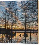 Sunset At Stumpy Wood Print