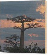 sunset in Madagascar Wood Print