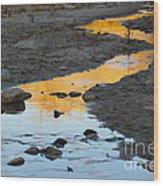 Sunset Reflected In Stream, Arizona Wood Print