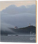 Swallowtail Lighthouse... Wood Print