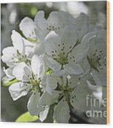 Tea Crabapple Wood Print