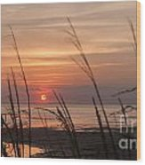 Texas Sunset Wood Print by Tammy Smith