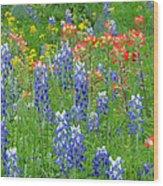 Texas Wildflowers Wood Print