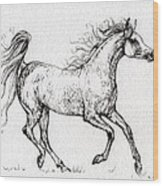 The Arabian Mare Running  Wood Print