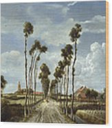 The Avenue At Middelharnis Wood Print