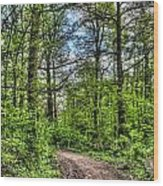 The Forest Path Wood Print