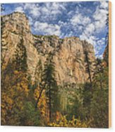 The Hills Of Sedona  Wood Print