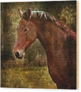 The Horse Portrait Wood Print