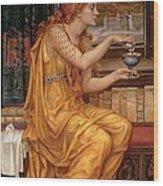 The Love Potion Wood Print