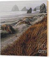 The Oregon Coast  Wood Print