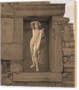 The Palaestra - Apollo Sanctuary Wood Print