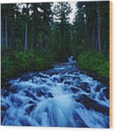 The Paradise River Wood Print