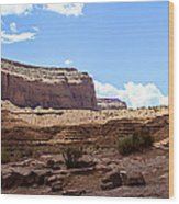 The View Hotel - Monument Valley - Arizona Wood Print