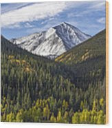 Torreys Peak  Wood Print
