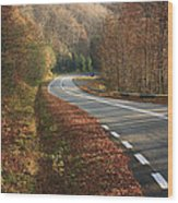 Transfagarasan Road Carpathian Mountains Romania  Wood Print