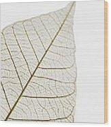 Transparent Leaf Wood Print
