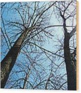 2 Trees Wood Print