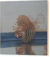 Tropical Lion Fish Wood Print