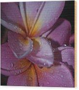 Tropical Rains Wood Print