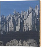 Tsingy De Bemaraha Madagascar Wood Print