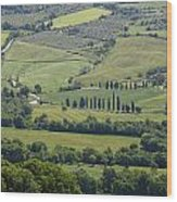 Tuscany - Val D'orcia Wood Print