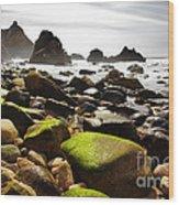Ursa Beach Wood Print