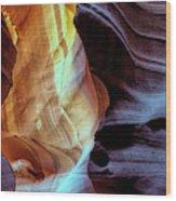 Usa, Arizona, Paige Wood Print
