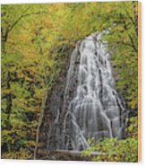Usa, North Carolina, Blue Ridge Parkway Wood Print