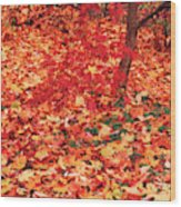 Usa, Washington State, Seattle Wood Print
