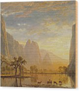 Valley Of The Yosemite Wood Print