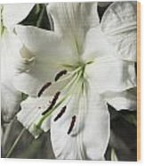 Vase White Lilies With Falling Petals As They Die Wood Print