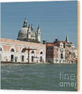 View On Venice Wood Print
