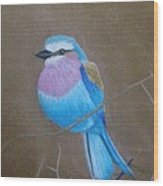Violet-breasted Roller Bird Wood Print