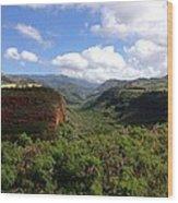 Waimea Canyon Kauai Wood Print