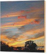 Evening Washington Monument Wood Print