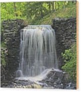 Water Fall Moore State Park Wood Print
