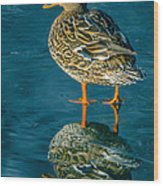Water Walker Wood Print