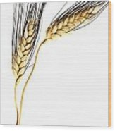 Wheat On White Wood Print